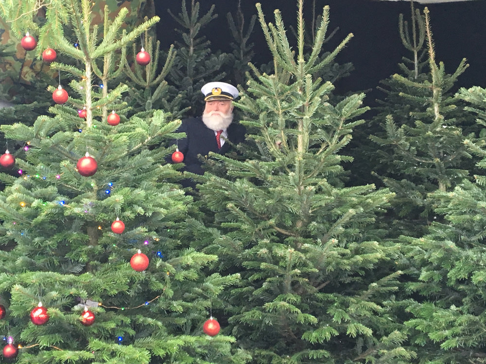 Captain kenneth in the firtree forrest